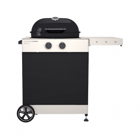 BARBACOA GAS AROSA 570 TEX